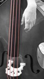 Superior Bassworks Strings