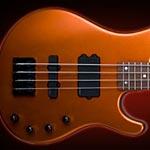 Washburn Unveils Stu Hamm Signature Bass