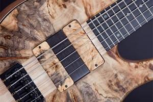 Fodera Janek Gwizdala Signature Imperial Bass - pickups & ramp
