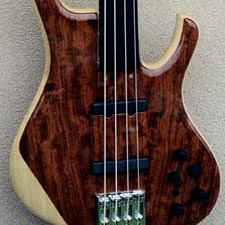 Custom Shop: Kinal Guitars