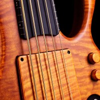 Bass of the Week: Zakrzewski Exclusive