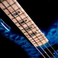 Bass of the Week: Spector NS-2