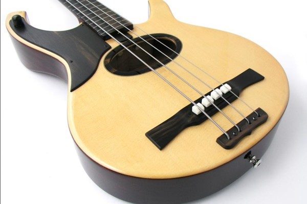 Bass of the Week: Citron AE4 and AE5 Swallow Acoustic/Electric Bass
