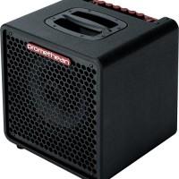 Ibanez Introduces Promethean P3110 1×10? Combo Amp
