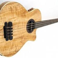 Manne Guitars Introduces VibraBass