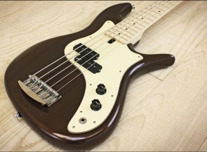 F Bass VF-P Bass - 5-string body