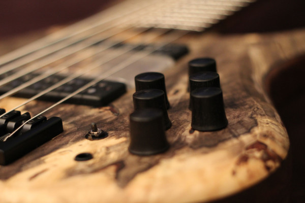 Bass of the Week: Erizias Basses 6-String Singlecut
