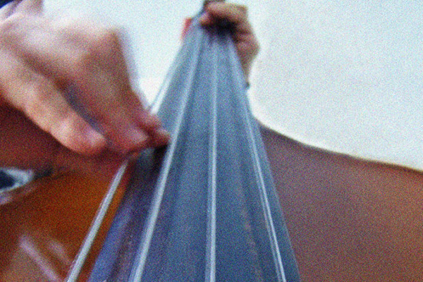 Learning the Double Bass Fingerboard