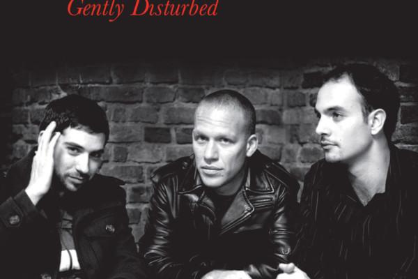 Avishai Cohen Trio Record Reissued on Vinyl