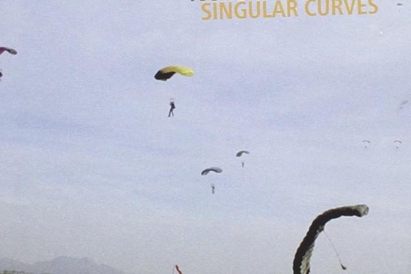 "Steve Swallow Releases ""Singular Curves"""