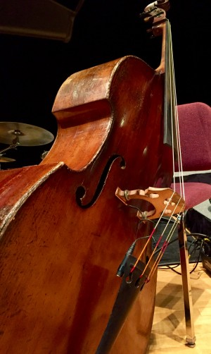 John Worster Arvell Shaw Bohemian Double Bass front