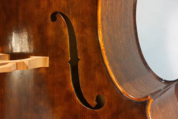 Bass of the Week: Nick Lloyd Basses 3/4 Lloyd Standard Model
