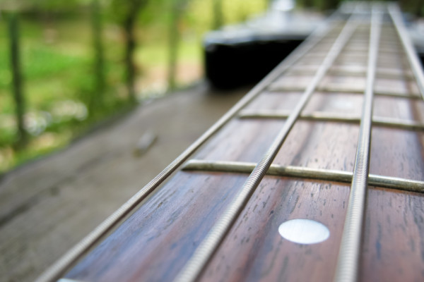 Curved vs. Flat Fingerboards on Bass