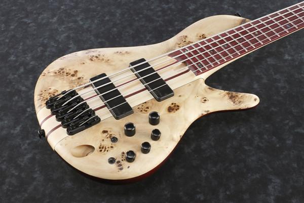 Ibanez Introduces SR Cerro Singlecut Bass