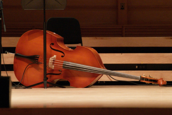 Buying Your First Double Bass (Upright Bass): Part 1