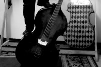 My Double Bass Setup: Part 2 – Number of Strings, Tuning and Fingerboard Length