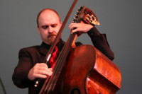 My Double Bass Setup: Part 3 – String Spacing and String Height