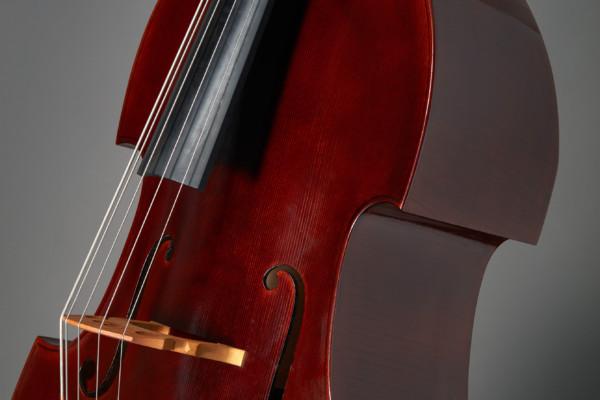 Bass of the Week: Kanzian & Traunsteiner Viennese Five-String Bass