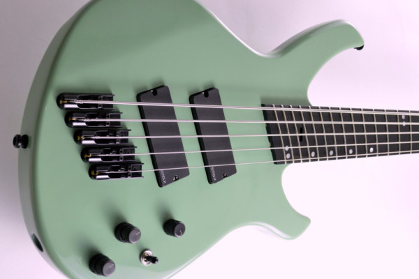 Bass of the Week: Fast Guitars Intrepid