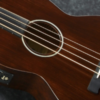 Ibanez Introduces Compact Acoustic Electric Basses