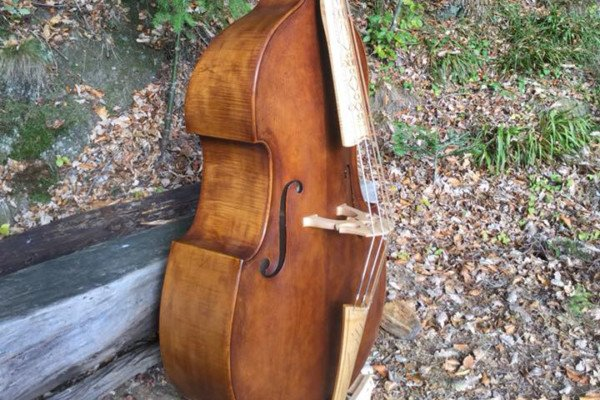 Bass of the Week: Michael Bornhak Viennese Violone