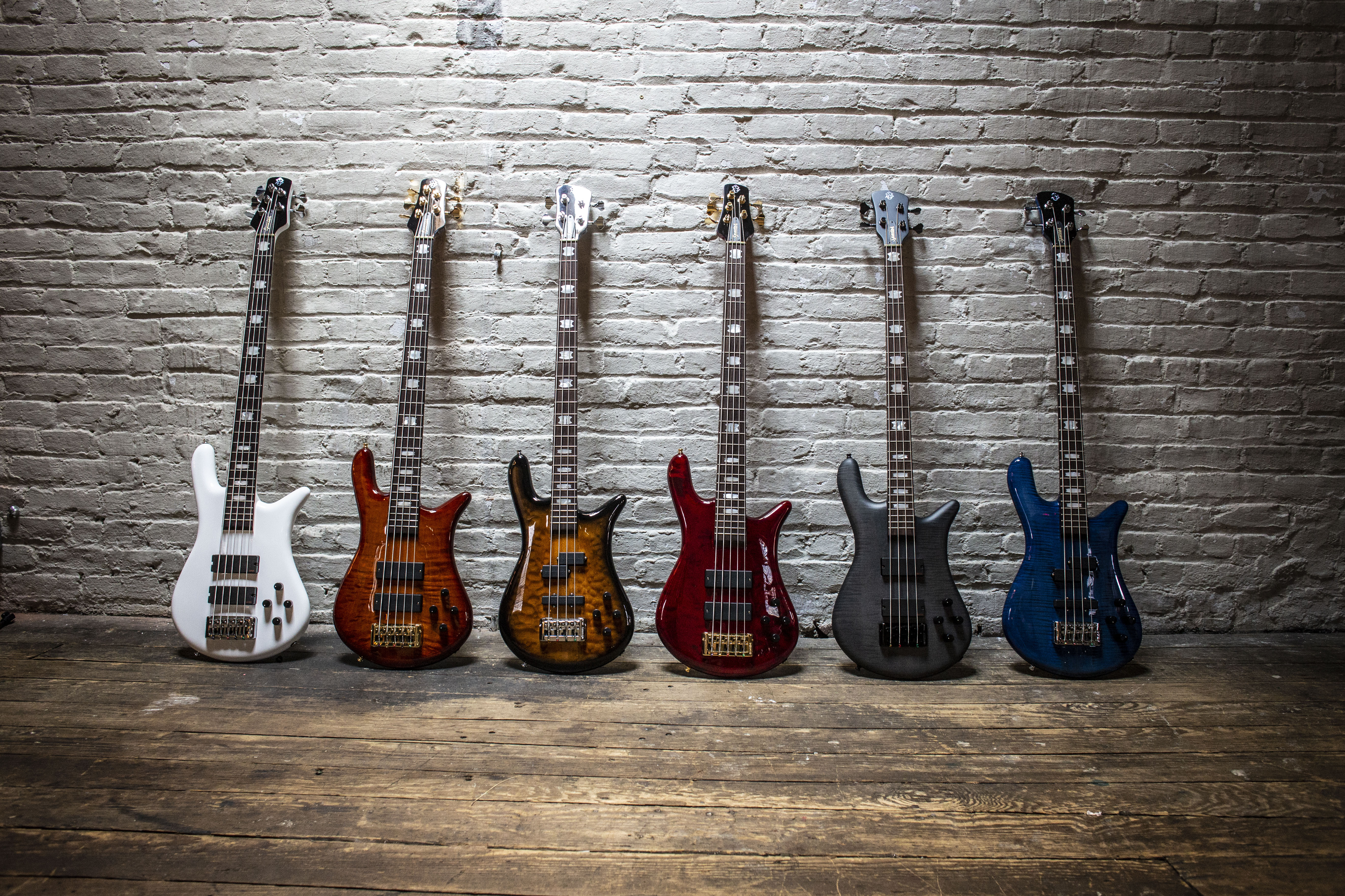 Korg USA Acquires Spector Basses