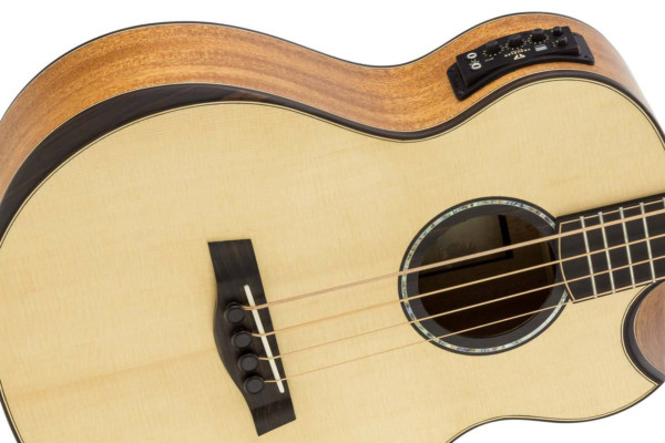 Traveler Guitars Introduces the CL-3BE Acoustic Bass