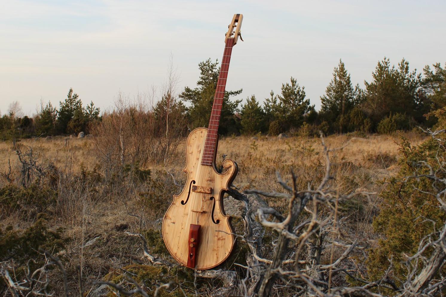 Tüi instruments Muhu Bass