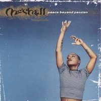 Meshell Ndegeocello: Peace Beyond Passion