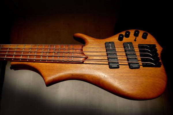 Bass of the Week: Elwray Basses Amani 5