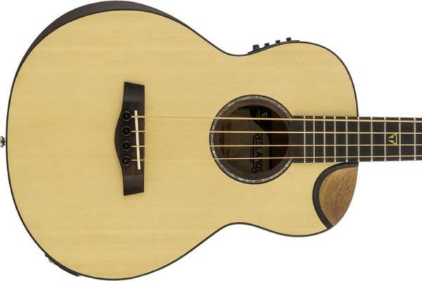 Traveler Guitar Introduces Redlands Concert Series Acoustic Bass