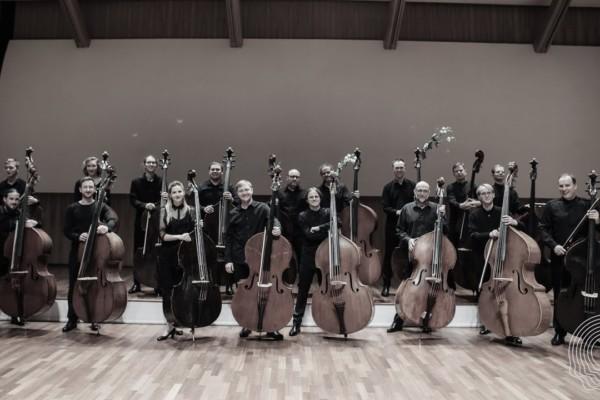 LNSO Double Bass Orchestra: Fantasia & Toccata (for 16 Double Basses)