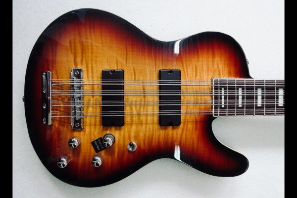 Bass of the Week: Musicvox Space Cadet Custom 12-String Bass