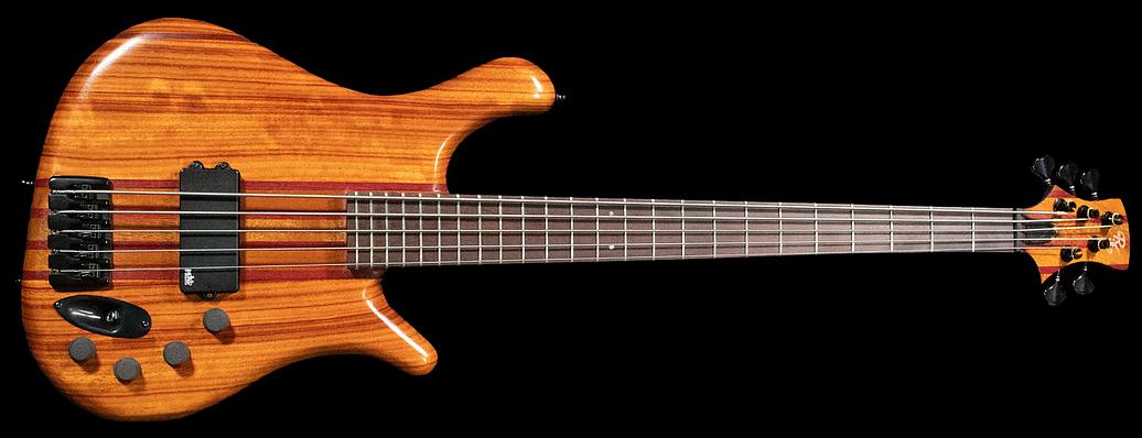 RG Custom Basses 5-String Bass