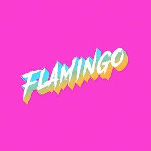 Doom Flamingo: Flamingo