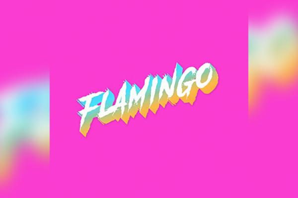 """Ryan Stasik and Doom Flamingo Release Second EP, """"Flamingo"""""""