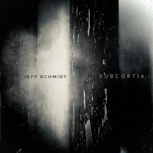 Jeff Schmidt: SUBCORTIA