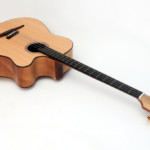 Bass of the Week: Stoll Guitars The Legendary Acoustic Bass